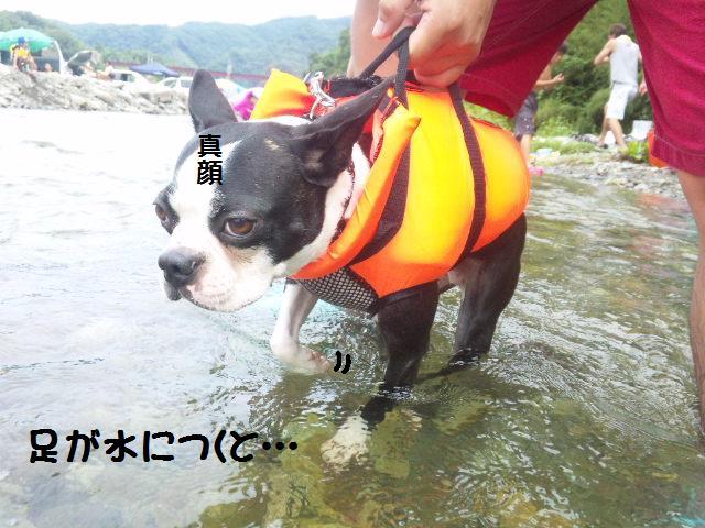 ★BBQと川遊び at 秩父 親鼻河原★_d0187891_210411.jpg