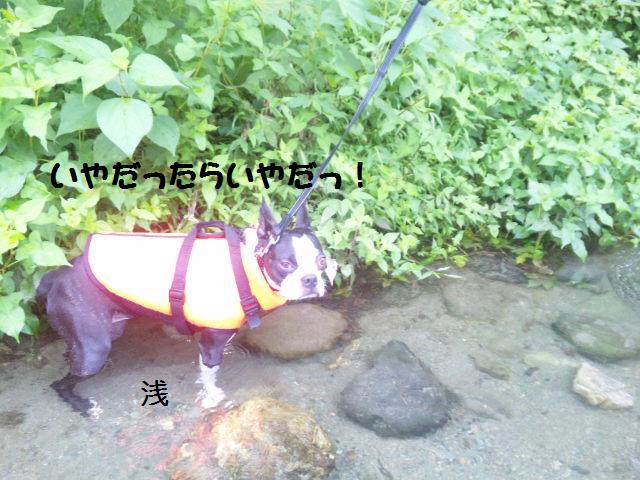 ★BBQと川遊び at 秩父 親鼻河原★_d0187891_2104993.jpg