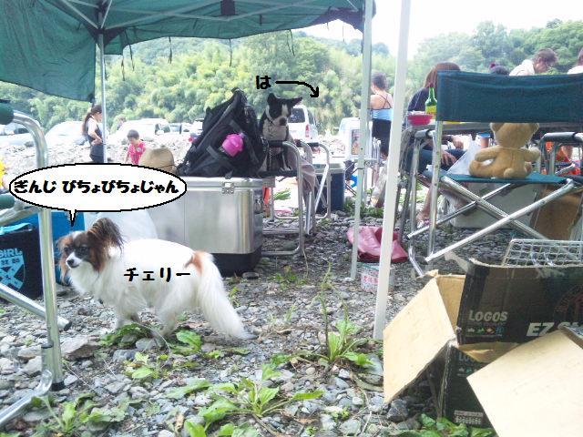 ★BBQと川遊び at 秩父 親鼻河原★_d0187891_211187.jpg