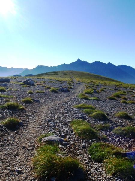 北アルプス2011夏④-双六岳_c0177814_11533752.jpg