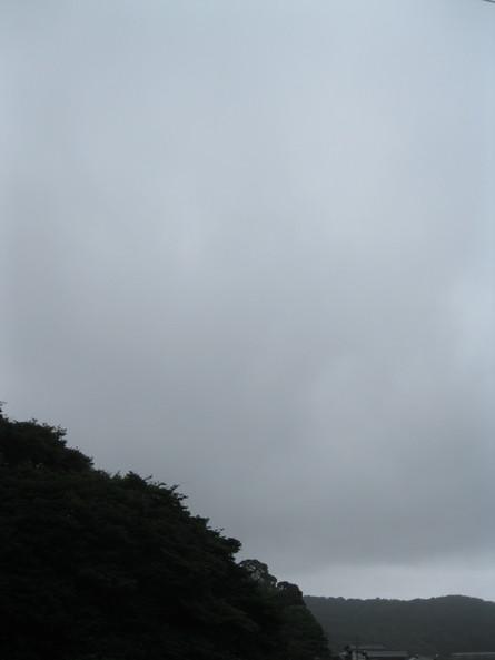 「風台風」~~_a0125419_6534142.jpg