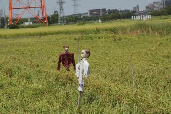 妄想な収穫時 2011 by KBの遠藤_f0225627_19543788.jpg