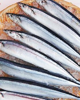 今年の秋刀魚祭りはどうなる?ですやん!_f0056935_1532942.jpg