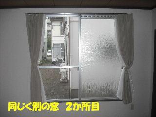 f0031037_2030998.jpg