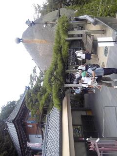 f0071840_1681526.jpg