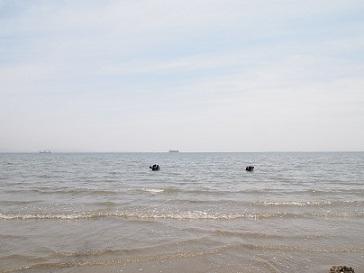 潮干狩り_e0214646_12223379.jpg