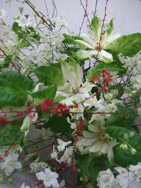 オークリーフ(水引と白いクレマチスの花束)_f0049672_12421318.jpg