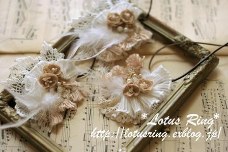 Angel\'s wing_a0169912_17372721.jpg