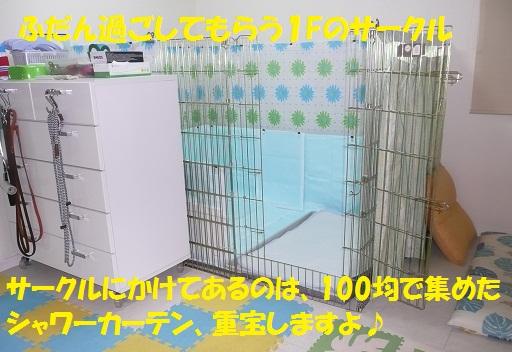 f0121712_16264399.jpg
