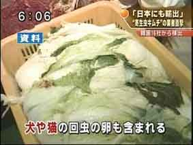 『韓国産キムチの日本向け輸出「衛生検査が3年間免除に」』/ searchina_b0003330_2063257.jpg