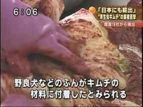 『韓国産キムチの日本向け輸出「衛生検査が3年間免除に」』/ searchina_b0003330_206390.jpg