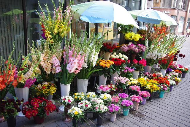 リガの旧市街散策、そしてエストニアのタリンへ_c0011649_11172598.jpg