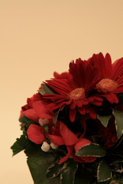 「すずちゃんのカメラ」出版記念、フォトセミナー 物撮り、お花編♪①_d0152261_1745166.jpg