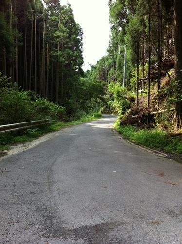 京都洛北ライドII.  雲ヶ畑_a0091314_213351.jpg