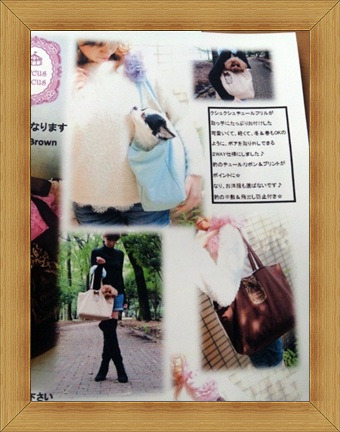 CircusCircus新作カタログ続き_b0084929_19434243.jpg