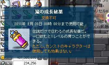 d0083651_0384937.jpg