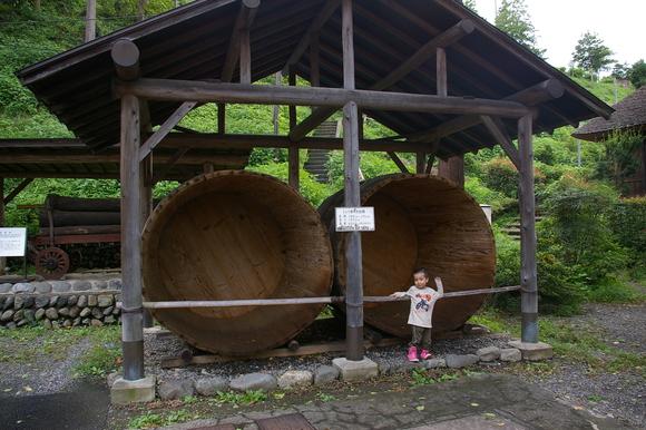 鉄道公園のあとは西多摩周遊/ short trip to westward of Tokyo_a0186568_18125835.jpg
