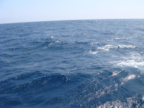 2011年度8月 蒼鷹丸航海_a0148134_1818592.jpg
