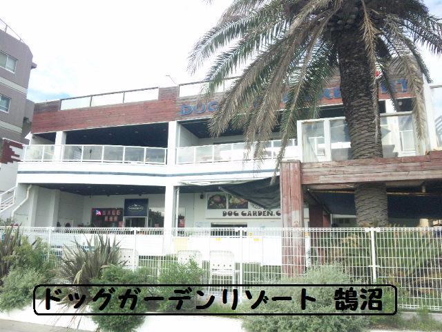 ★はなこはんに逢いに湘南へ ドッグガーデンリゾート編★_d0187891_13562443.jpg