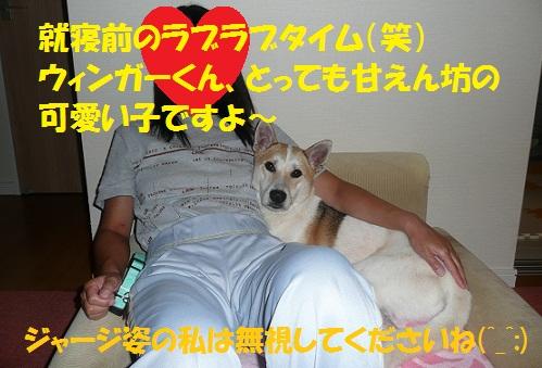 f0121712_1463512.jpg