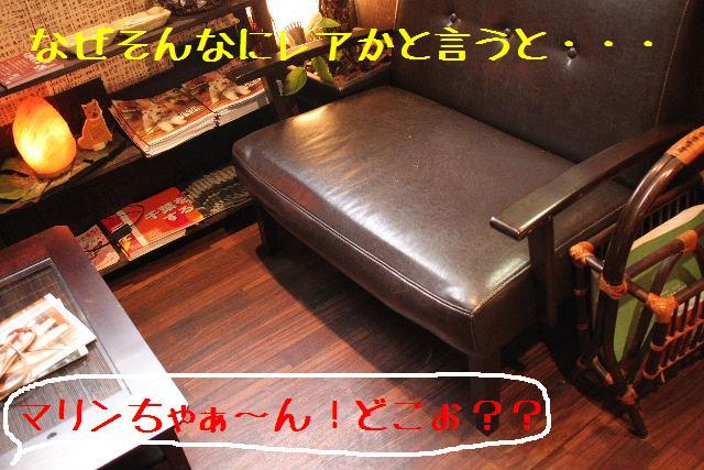 b0130018_2051470.jpg