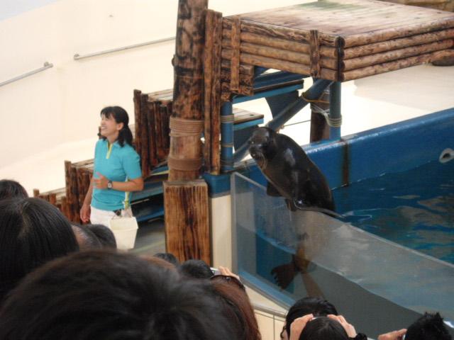 2011年 夏旅行 ~夢が一つ叶いました@鳥羽水族館~_d0104926_6381683.jpg