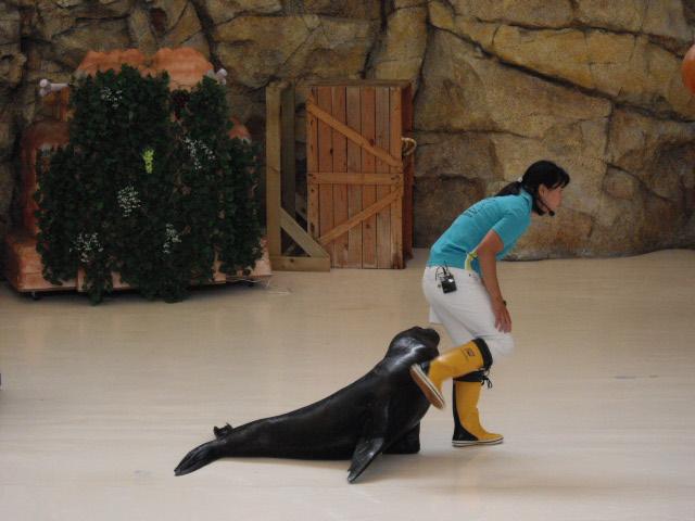 2011年 夏旅行 ~夢が一つ叶いました@鳥羽水族館~_d0104926_639148.jpg