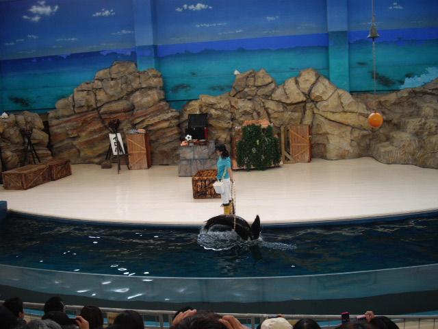 2011年 夏旅行 ~夢が一つ叶いました@鳥羽水族館~_d0104926_641938.jpg