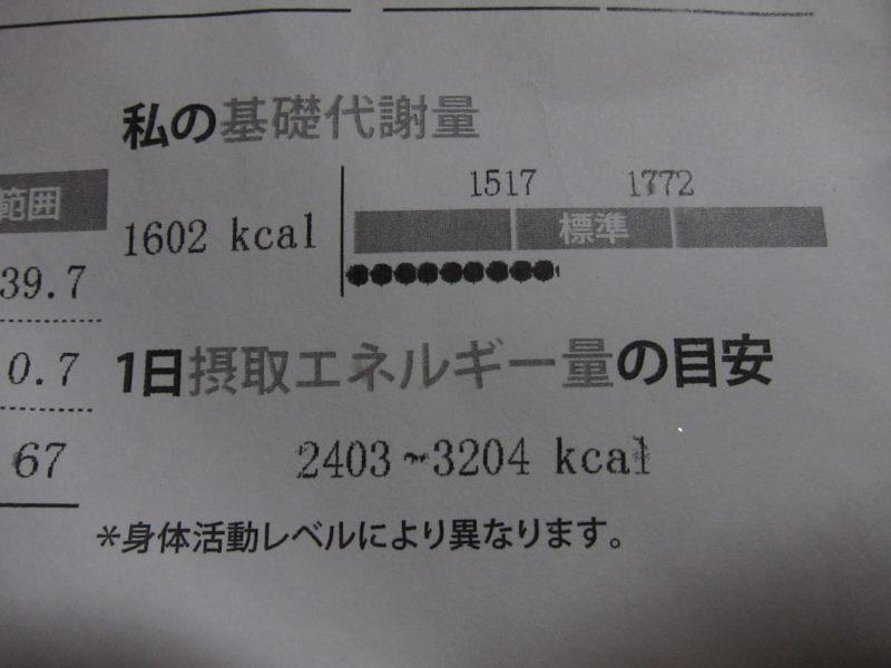 e0138081_141049.jpg