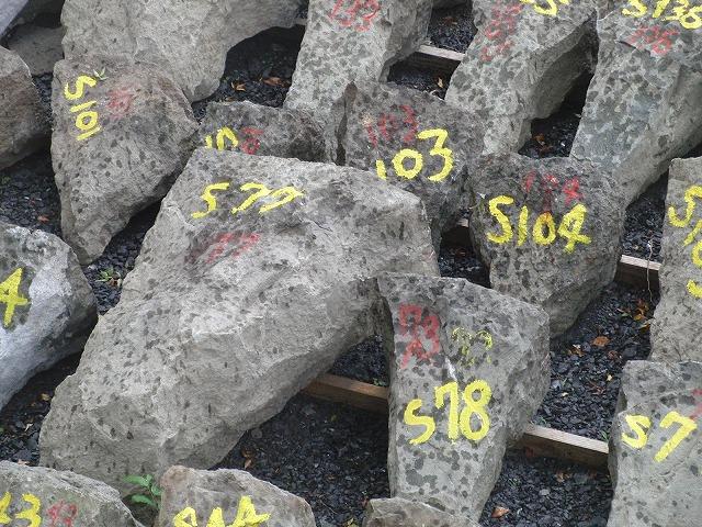 2年前の駿河湾地震による駿府城石垣の崩落と復旧工事_f0141310_902473.jpg