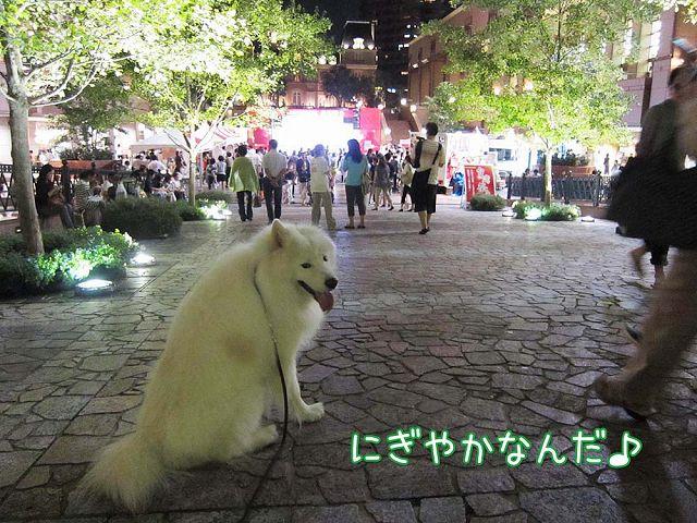 台湾祭り_c0062832_521537.jpg