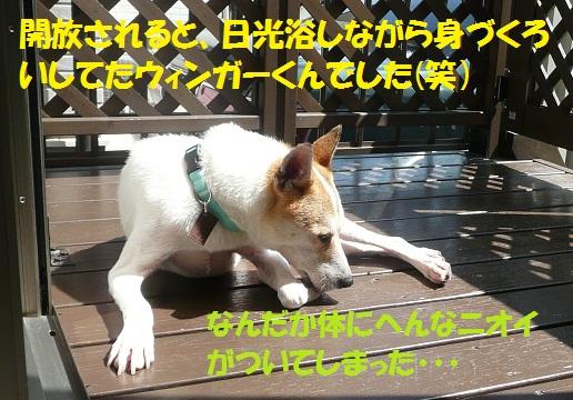 f0121712_15131992.jpg