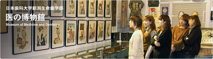 日本歯科大学新潟生命歯学部・医の博物館はすばらしい・・・_d0178825_153783.jpg