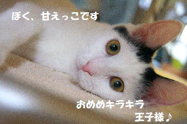 f0197682_23482378.jpg