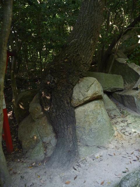 パワースポット 越木岩神社_b0054727_21201648.jpg