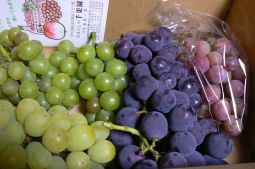 葡萄を買いに山梨へ_b0177649_2154010.jpg