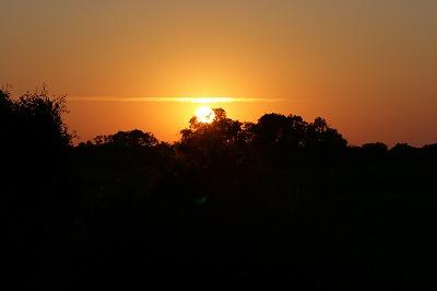 Sunrise♪_e0139694_6403991.jpg