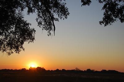 Sunrise♪_e0139694_6452994.jpg