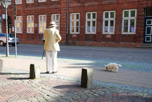 ドイツが犬天国だったわけ_c0099133_10442043.jpg