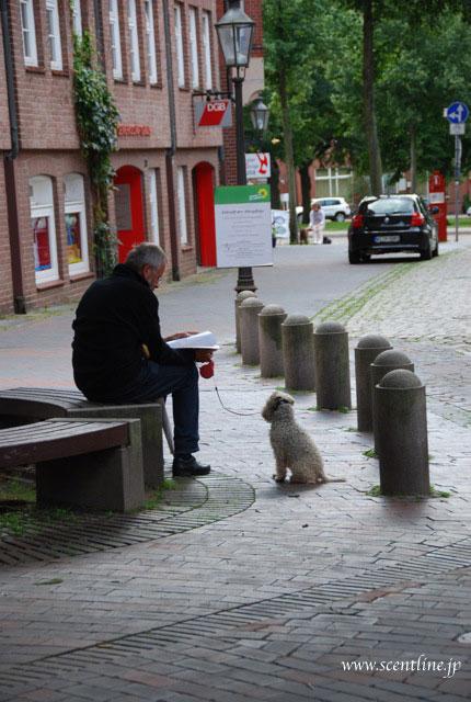 ドイツが犬天国だったわけ_c0099133_8423493.jpg