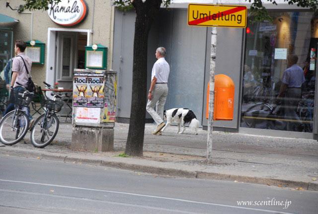 ドイツが犬天国だったわけ_c0099133_9222495.jpg