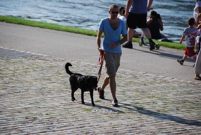 ドイツが犬天国だったわけ_c0099133_9272264.jpg
