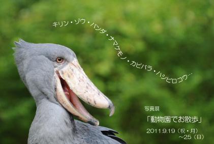b0024758_22314180.jpg
