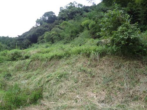 草刈り_c0169176_17353692.jpg