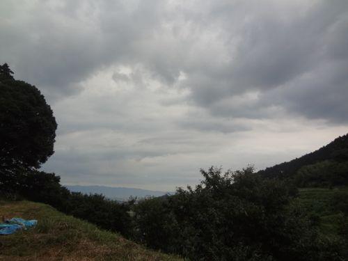 草刈り_c0169176_17354166.jpg