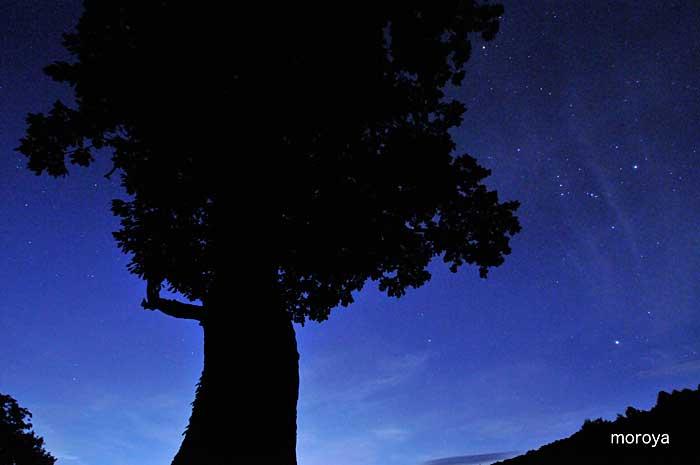 夜空_c0085877_6573924.jpg