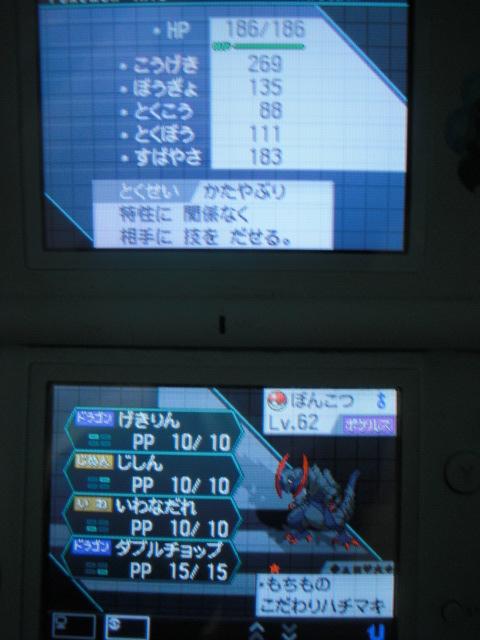 f0104791_1495153.jpg