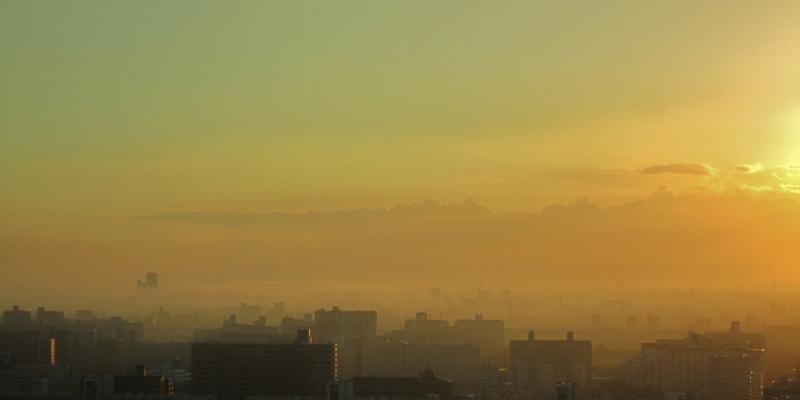 霧の夜明け_b0083801_553219.jpg