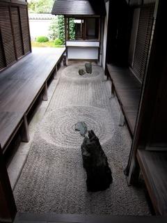 週末旅行8(9/10:京都)_d0010432_154990.jpg