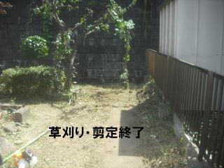 f0031037_218198.jpg